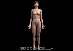skin_female_anterior_web.jpg 